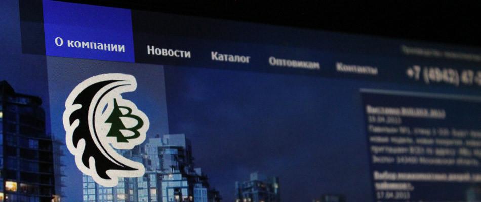 """Создание сайта компании """"Практика"""""""