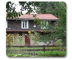 Сайт гостевого дома<br/> Яблоневый сад